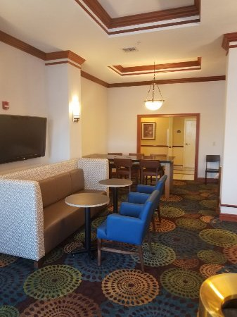 Holiday Inn Express Tampa Fairgrounds: Great breakfast breakfast area new furniture very comfortable.