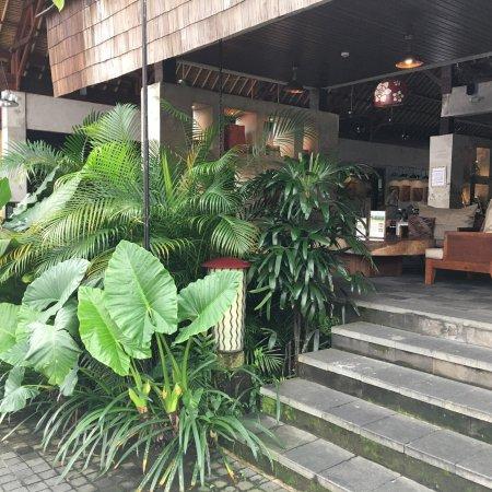 Alaya Resort Ubud: photo2.jpg