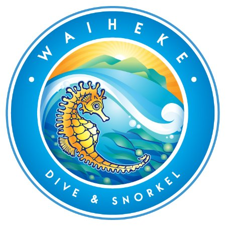 Waiheke Dive and Snorkel