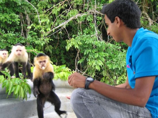 Monkey Lodge Panama: Canal Tour Gatun lake