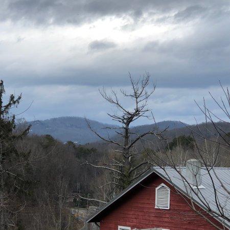 Western North Carolina Nature Center Hours