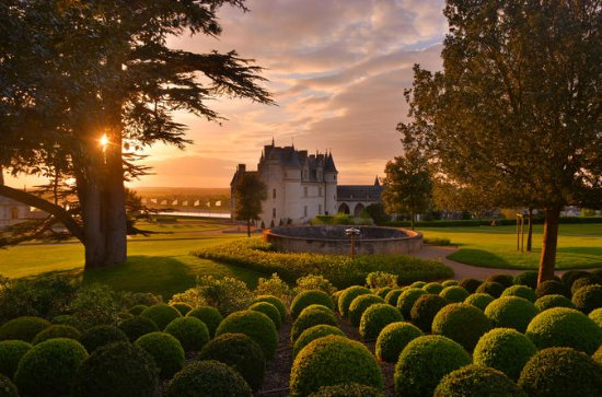 Chateau Amboise and Gardens Admission...