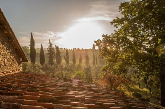 Photo Tour - Blue Hour Light Photo Tours in Chianti Region (Tuscany)
