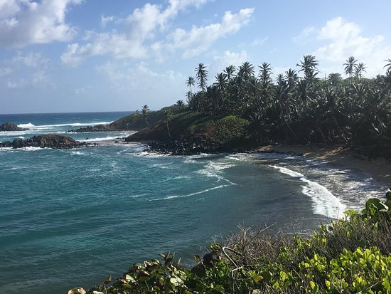 Little Corn Island, Nicaragua: Pre-fishing walk to find fish.