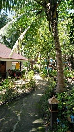 Cabilao Island, Filippinerne: IMG_20180131_122800_large.jpg
