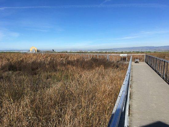 Alviso, Калифорния: walkway