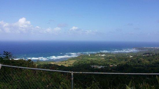 Union Hall, Barbados: 20180205_142756_large.jpg