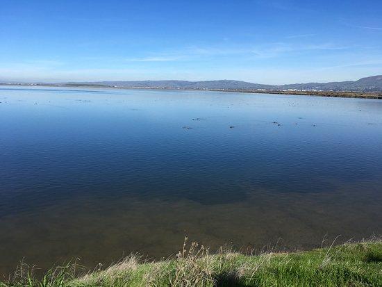 Alviso, Californien: Water