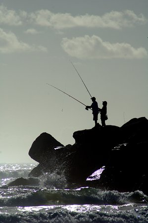 Wooli, Australia: Visit the rock wall at the mouth of the River to do some more fishing