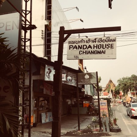 Panda House Chiangmai : photo4.jpg