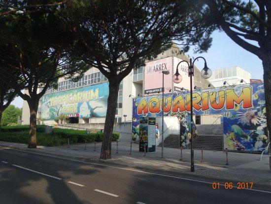 Ufficio Per Il Turismo Jesolo : Centro imprese turistiche jesolo foto di consorzio di imprese