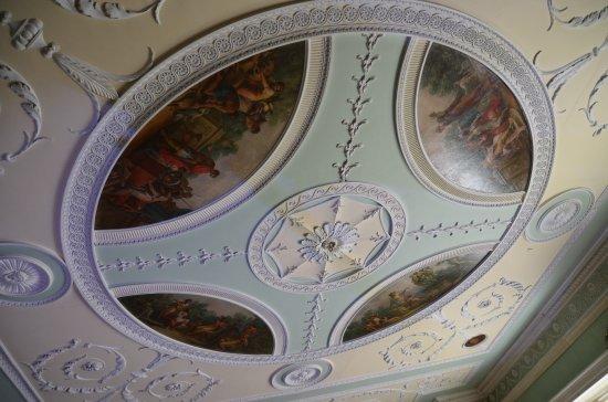 Saltram (National Trust): Deckenverzierungen