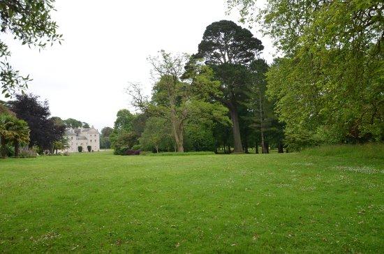 Saltram (National Trust): Der wunderbare Park