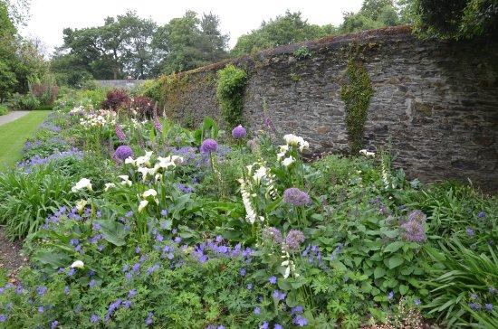 Saltram (National Trust): Garten