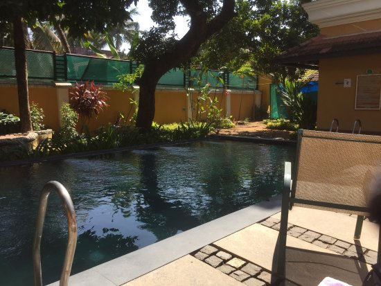 Cafe du Mahe: pool area