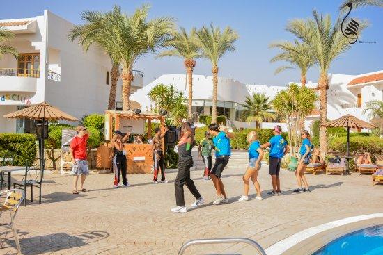 Dive inn resort updated 2018 prices reviews sharm el sheikh egypt tripadvisor - Dive inn resort egypt ...