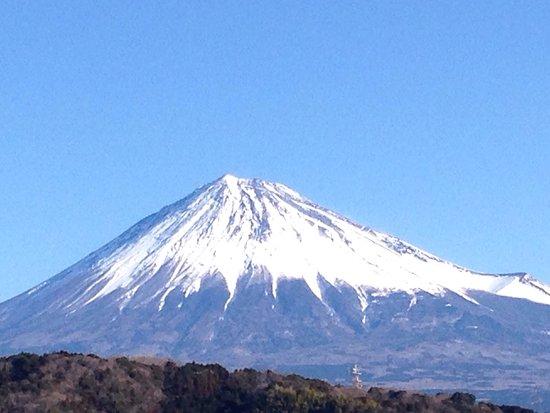 Fujigawa Service Area - Inbound
