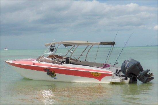 Albion: Le bateau=Dodo Rasta! / The boat=Dodo Rasta!