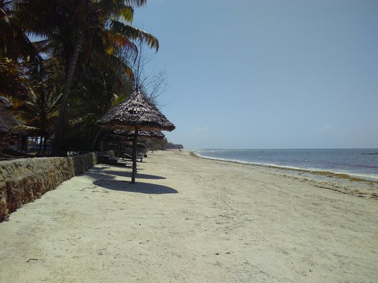 img 20180201 140615 large jpg picture of afro beach bungalow