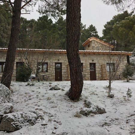 La Cabrera 사진