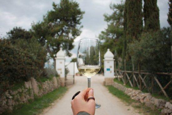 Puglia Taste & Culture