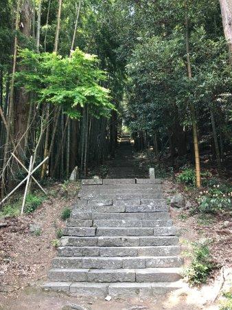 Taisenji Temple: 大山寺への道
