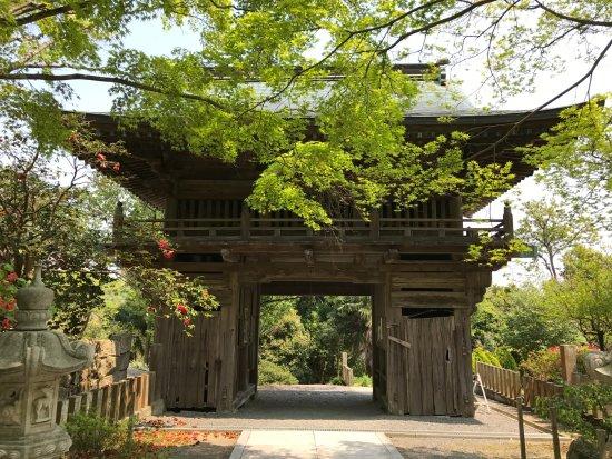 Taisenji Temple: 大山寺山門