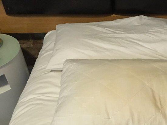 1831 Boutique Hotel: Pillow