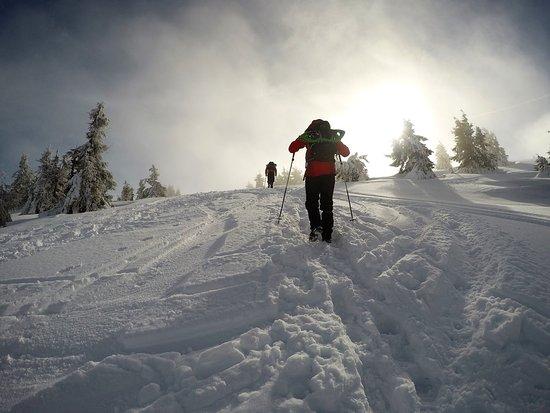 Arieseni, Romania: snow track