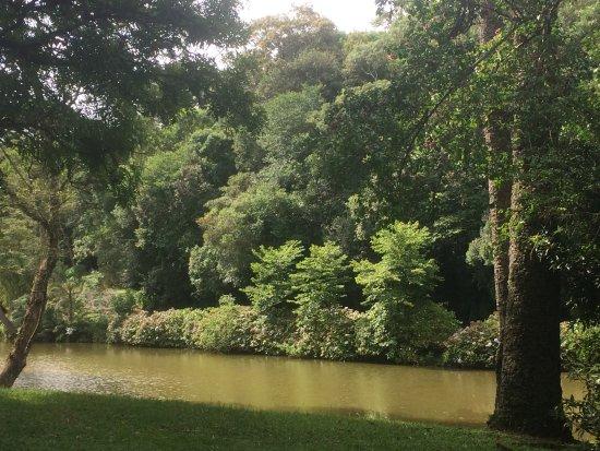 Parque da Barreirinha