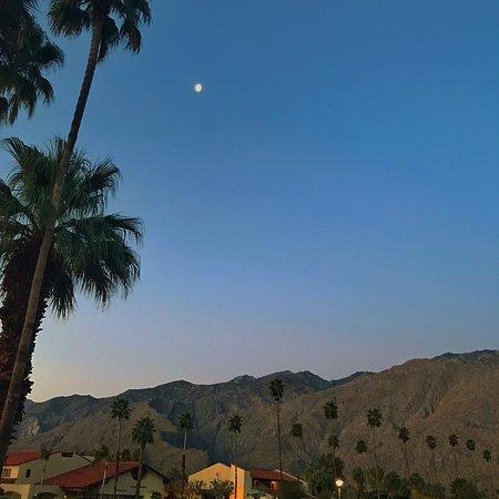 Courtyard by Marriott Palm Springs: photo0.jpg