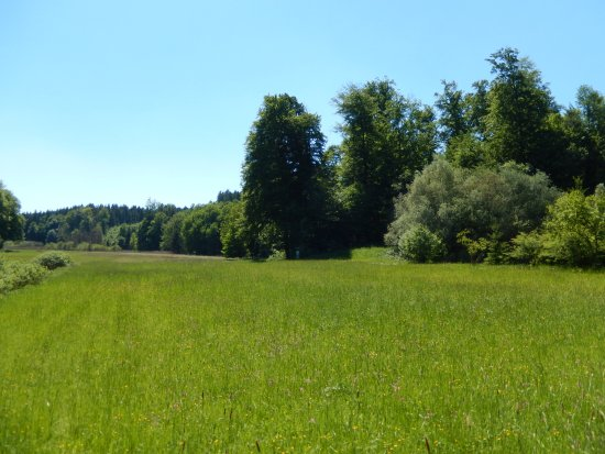 Obing, Γερμανία: Griessee