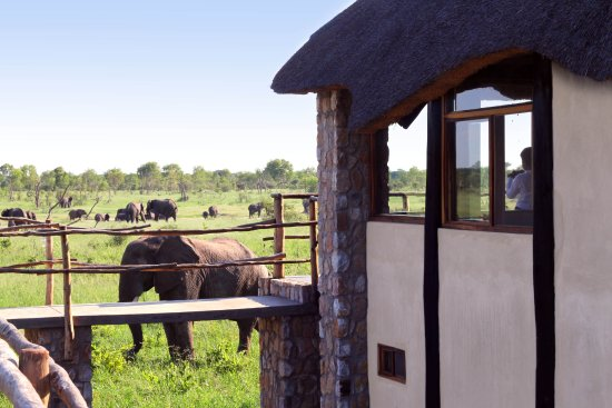 Hwange National Park, Zimbabwe: Tree Top Villa Exterior