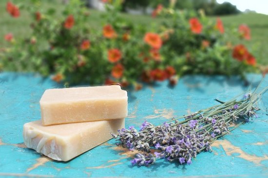 Harmony Lane Farm & Creamery: All our soap is made in small batches with organic materials and double the raw goats milk!