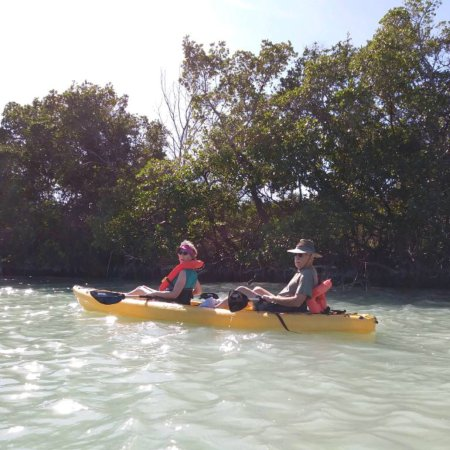 Stump Pass Beach State Park (Englewood) - All You Need to ...