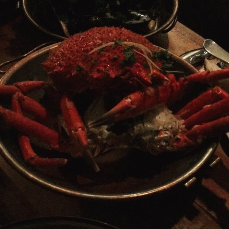 The Wheel House: Medium Spider Crab
