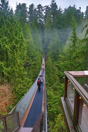 North Vancouver, Canada: The bridge!