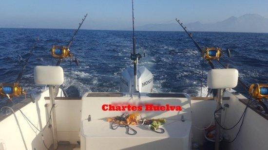 Province of Huelva, Spain: buen charters de pesca todos los dias del año y todas las modalidades