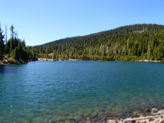 Truckee Picture
