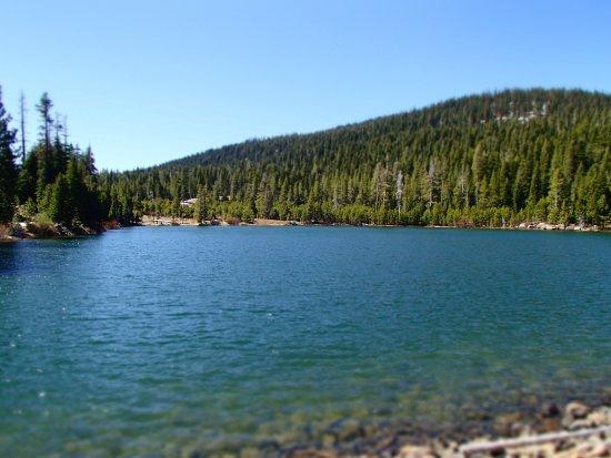 Sawmill Lake Fly Fishing