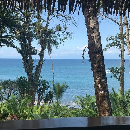 Copa de Arbol Beach and Rainforest Resort: View from Sable #8