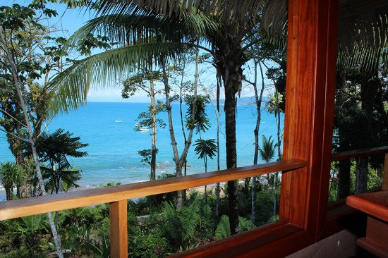 Copa de Arbol Beach and Rainforest Resort: View from the balcony of Sable 8