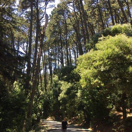 Cerro Caracol: photo0.jpg