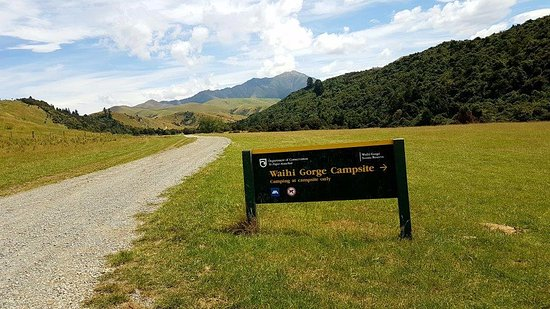 DOC Waihi Gorge campsite: What a perfect place