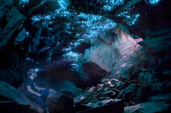 Glowworm Caving Adventure Tour in...