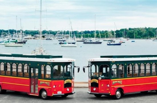 Newport Viking Trolley Tour with One...