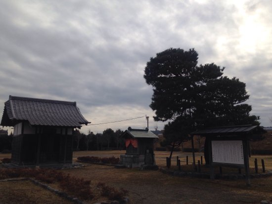Shimada, Japan: 朝顔の松公園