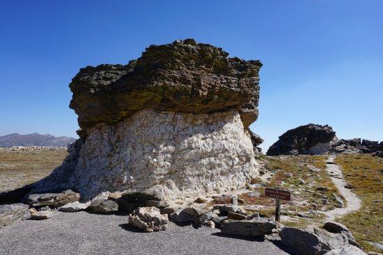 Tundra Communities Trail : Mushroom Rock