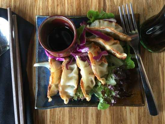 Crowsnest Pass, Canada: Gyoza, simply delicious!