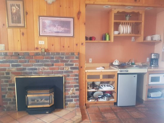 Falling Waters River Resort: kitchenette and fireplace